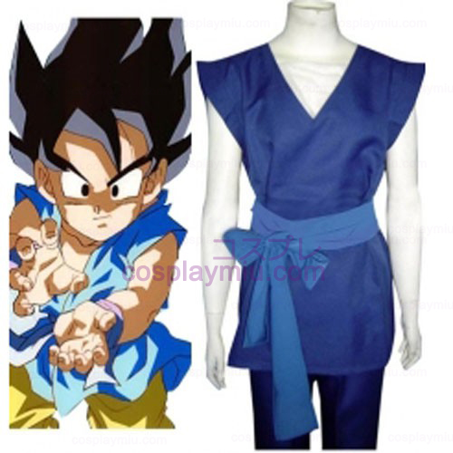 Dragon Ball Son Gohan Cosplay Kostumer