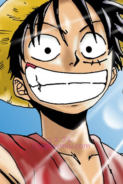 One Piece Monkey D. Luffy Short Cosplay Paryk